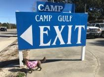 Camp Gulf and Coco