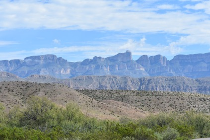 The Chihuahuan Desert with mountains in the background.